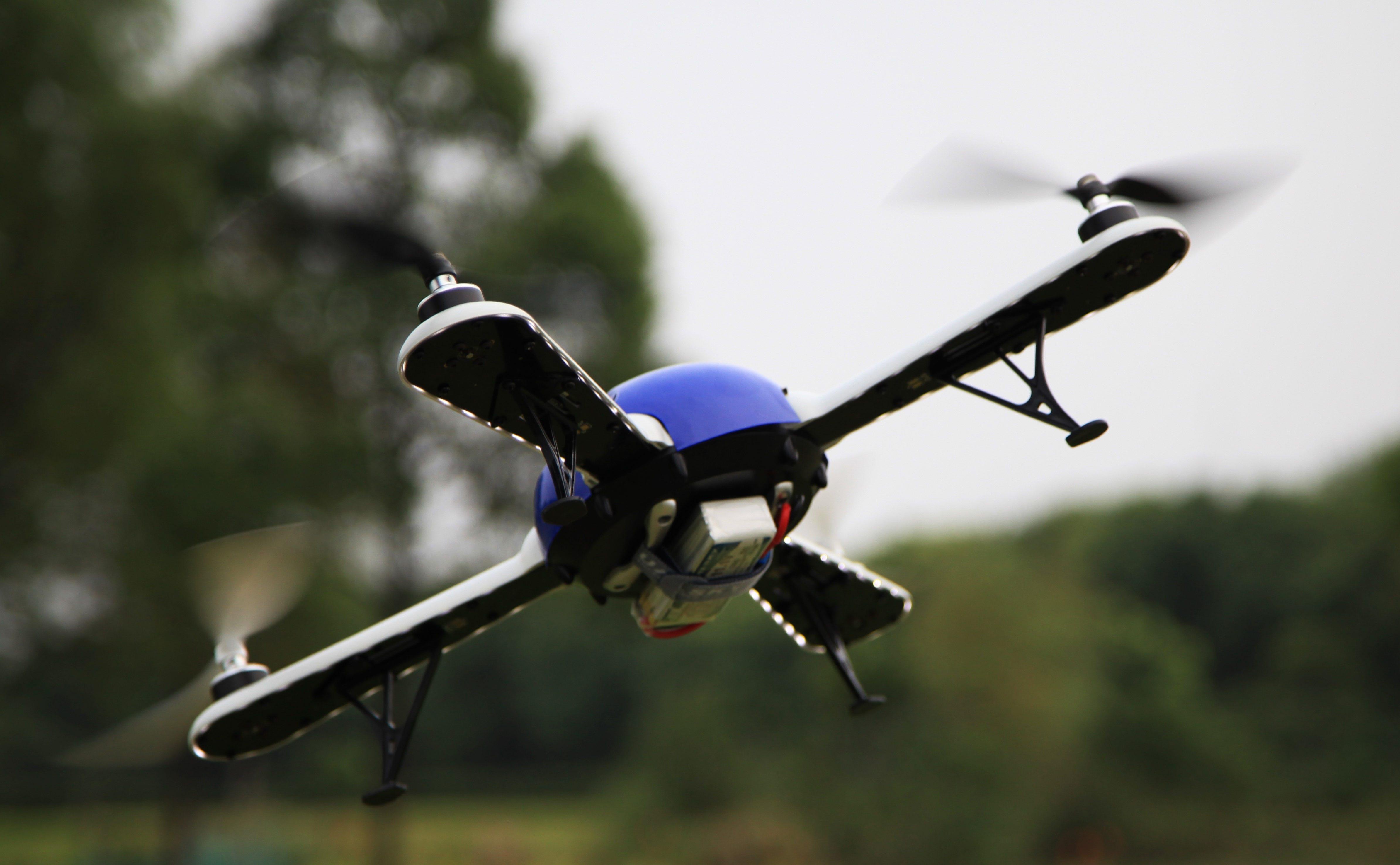 Dualsky's Hornet 460 Quadcopter